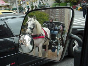 Horses and Vans both stop in traffic